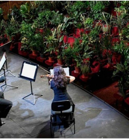 Όπερα Βαρκελώνης: Συναυλία με θεατές 2.292 φυτά!